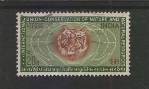 India 1969  # 505   IUCN  Tiger     Used    03445   SD