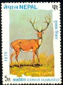 Red Deer, Nepal stamp SC#305 MNH