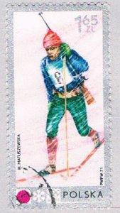 Poland Skier 165 (AP114212)