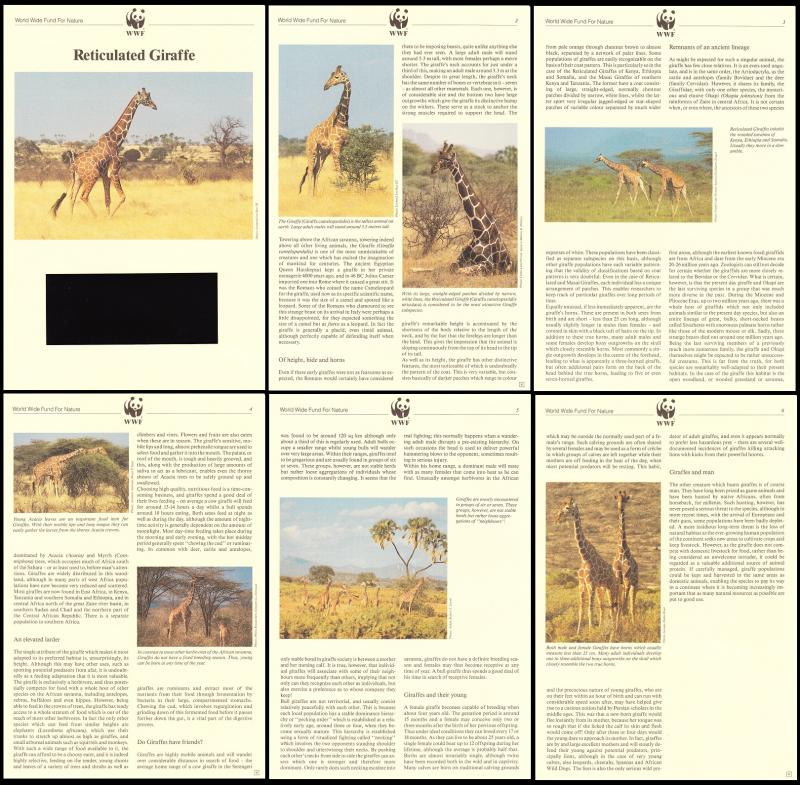 Kenya WWF Reticulated Giraffe Info pages