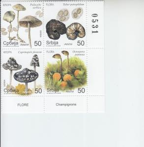 2019 Serbia Mushrooms B4   (Scott 849) MNH