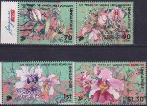 Singapore 2018 Flowers - The 125th Anniversary of the Vanda Miss Joaquim Orchid