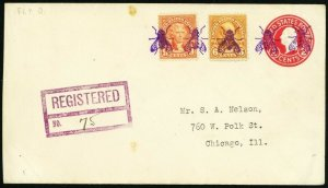 Fly in Purple Three Strong Strikes Fancy Cancel Registered Cover - Stuart Katz
