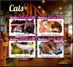 2019 Maldives Cats MS4 (Scott NA) MNH