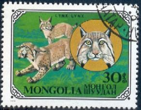 Wildcat, Lynx, Mongolia stamp SC#1090 used