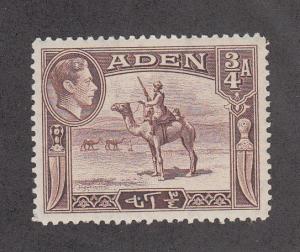 Aden Scott #17 MNH