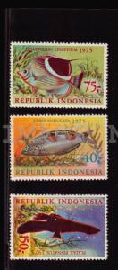 Indonesia 959-961,MNH.Michel 827-829. Fish 1975 Coris angulata,Chaetodon,Platax