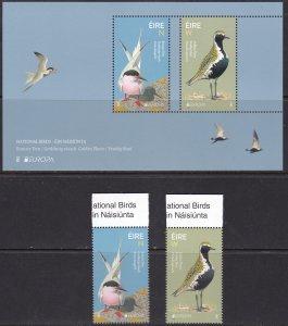 Ireland, Fauna, Birds, EUROPA MNH / 2019