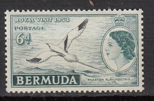 Bermuda - 1953 QEII 6p Bird Sc# 152 - MNH (8895)