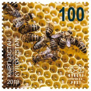 Stamps of Kyrgyzstan 2019. - Stamp.  141M. Honeycomb.
