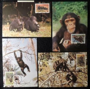 Sierra Leone 1983 WWF chimpanzees maxicard animals WWF apes mammals