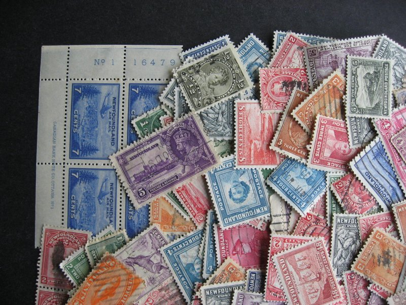 Newfoundland 200 older mixture (duplicates,mixed condition) check them out!