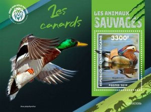 Central Africa - 2019 Wild Animals Ducks - Stamp Souvenir Sheet - CA190308b