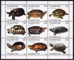 Tajikistan 1999 TURTLES Sheetlet (9) Perforated MNH