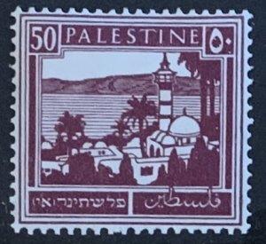 PALESTINE 1927  50m SG100 MOUNTED MINT