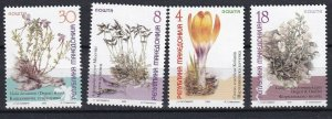 Macedonia 1999 Flowers 4 MNH stamps