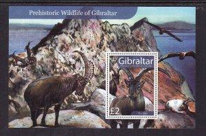 Gibraltar MNH S/S 1103 Wildlife 2007