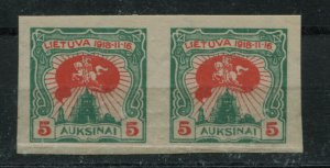 LITHUANIA 80  MNH IMPERF PAIR