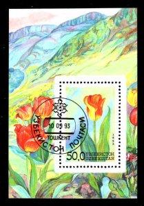 Uzbekistan # 44~  Souvenir Sheet ~ CTO, NH