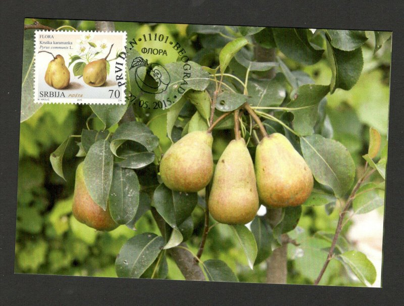 SERBIA-MC-MK-EUROPEAN NATURE PROTECTION-FLORA-FRUITS-PEAR-2015.