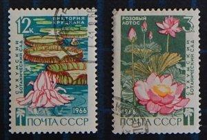 Flowers, USSR, (2583-T)
