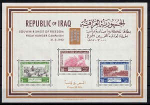 Iraq - SGMS639 - Freedom from hunger - mint block. CV 7.25£ (approx. 8.40€)