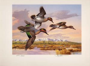 IDAHO #2 1988 STATE DUCK STAMP PRINT GREEN WINGED TEAL by Jim Killen