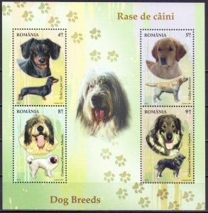 Romania. 2012. Small sheet 6640-43. Dogs. MNH.