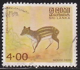 Sri Lanka 730 USED 1982 Mouse Deer