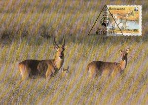 Botswana 1988 Maxicard Sc #434 35t Red lechwe antelope WWF