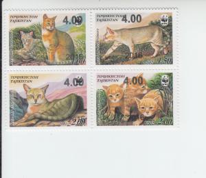 2016 Tadzhikistan Wild Cat WWF Surcharged  (B4) (Scott NA) MNH