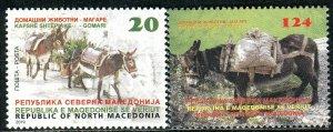 315 - MACEDONIA 2019 - Domestic Animals - Donkey - MNH Set