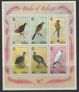 BELIZE SGMS458 1977 BIRDS MNH