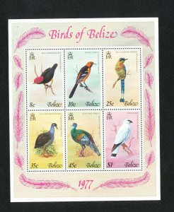 BELIZE - Scott 403a - MNH S/S with lite selvage crease - BIRDS - 1977