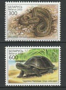 Belarus 2003 Fauna Snakes, Turtles 2 MNH stamps