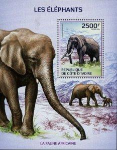 Elephant Stamp Loxodonta Africana Wild Animal S/S MNH #1613 / Bl.209