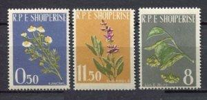 1962 Albania 654-656 Flowers 6,00 €