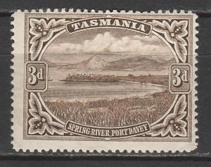 TASMANIA 1899 SPRING RIVER 3D WMK MULTI TAS