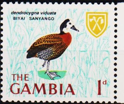 Gambia. 1966 1d S.G.234 Unmounted Mint
