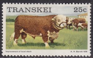 Transkei 17 Improving Cattle Breeds 1976