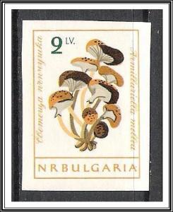 Bulgaria #1190 (v) Mushrooms MNH