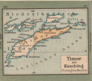 Germany Schaubek Poster Stamp TIMOR Map A6102