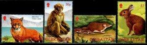 GIBRALTAR Sc#909-912 2002 Wildlife Complete Set OG Mint NH