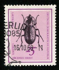 Beetle (TS-2050)