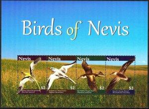 Nevis 2010 Birds Sheet MNH