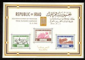 IRAQ 1963 FAO Freedom From Hunger Souvenir Sheet Sc 335a MNH