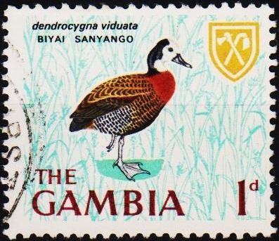 Gambia. 1966 1d S.G.234 Fine Used