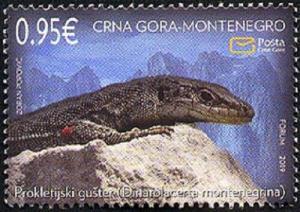 MONTENEGRO/2019 - Fauna (Prokletije Rock Lizard) (Reptile), MNH