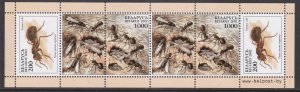 Belarus, Fauna, Insects, booklet pane MNH / 2002