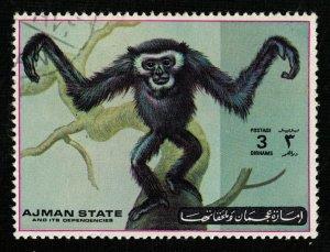 1973, Airmail - Apes and Monkeys, Ajman, 3D (RT-1369)